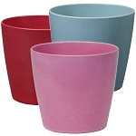 OASIS ECOssential 5-inch Cylinder Container - Available in 10 colors - by the piece