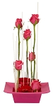 Valentine's Day Recipe #42 - Scroll down to