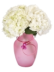 Valentine's Day Recipe #52 - Scroll down to