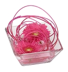 Valentine's Day Recipe #62 - Scroll down to