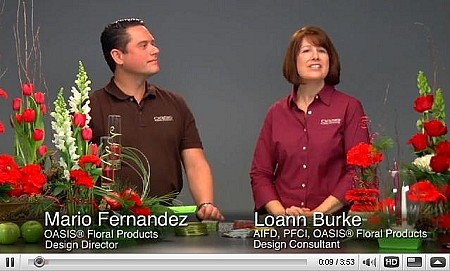 VIDEO - Holiday Designs - Scroll down for VIDEO