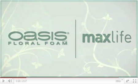 VIDEO - Introducing OASIS Floral Foam Maxlife! - Scroll down for VIDEO