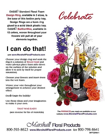 Celebrate #1 - Scroll down for PDF Guide