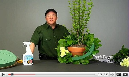 VIDEO - Natural Sympathy Arrangement w/ Take-Home Tree - Scroll down for VIDEO